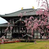 2014 Japan - Dag 8 - janita-SAM_6308.JPG