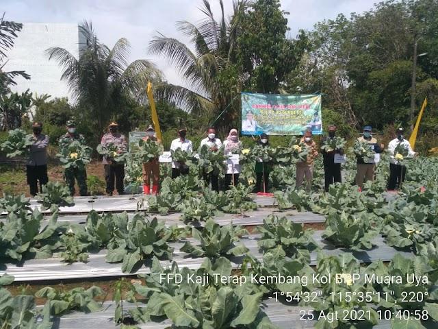 Laksanakan Peran BPP Kostratani, BPP Muara Uya Gelar Farmer Field Day