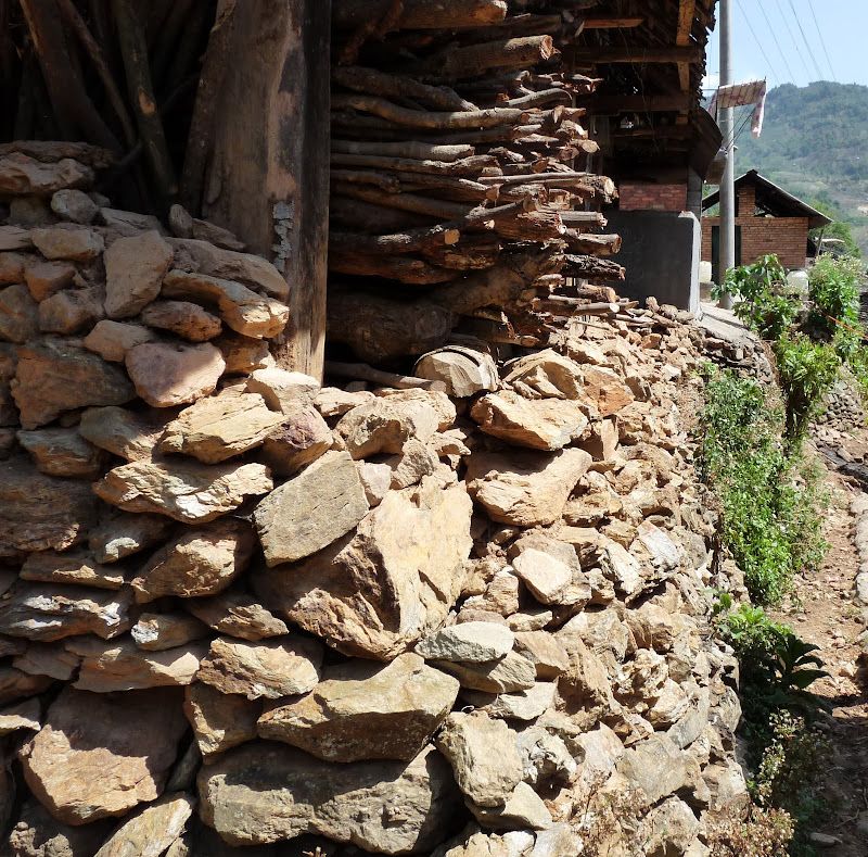 Chine: randonnée xishangbanna, région de Bada - Picture%2B814.jpg