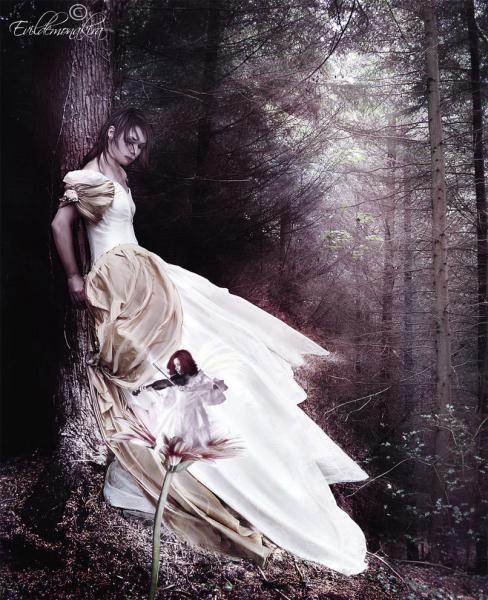 Bloody Tear In A Wood Of Fear, Gothic Girls