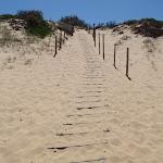 Track down dunes onto Wallagoot Beach (104902)