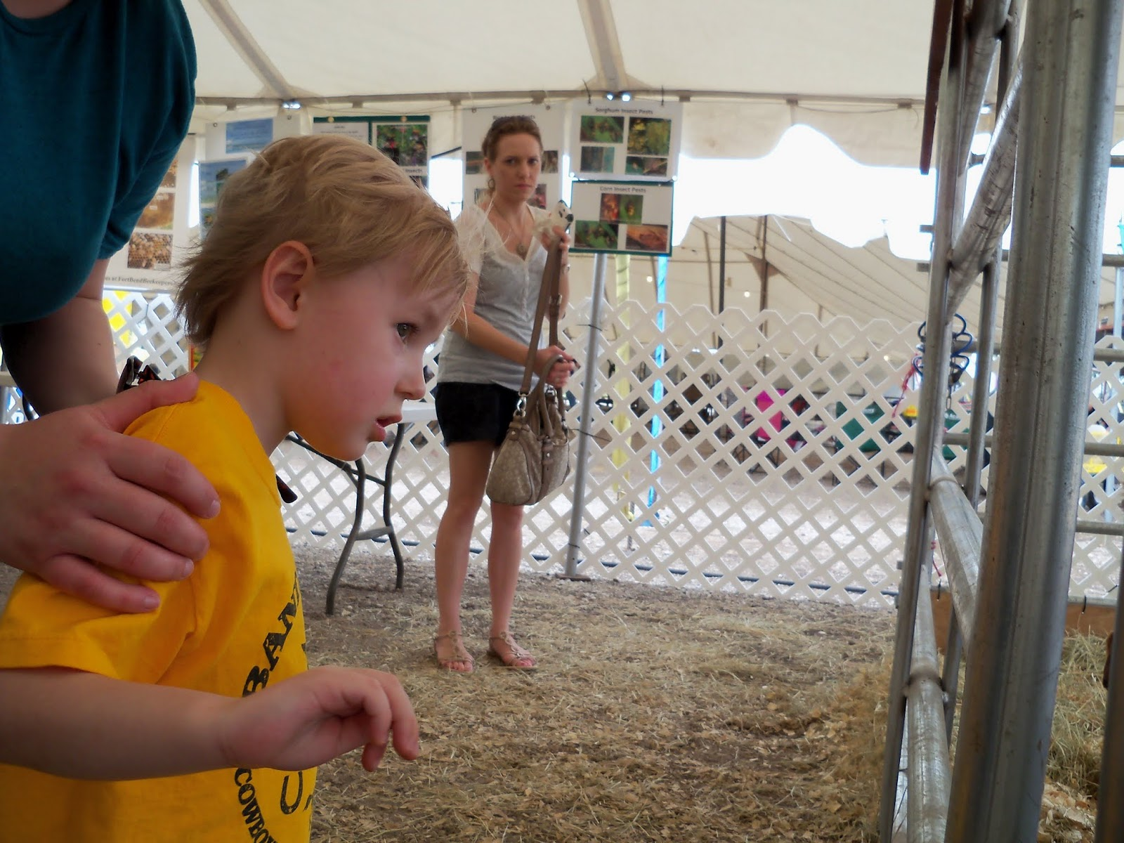 Fort Bend County Fair 2015 - 100_0335.JPG