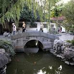 Yu Garden in Shanghai in Shanghai, Shanghai, China