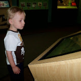 Houston Museum of Natural Science - 116_2847.JPG