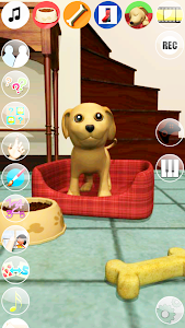 Sweet Talking Puppy: Funny Dog screenshot 4
