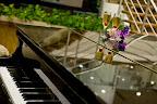 Фото 6 Concorde Deluxe Resort Hotel & SPA