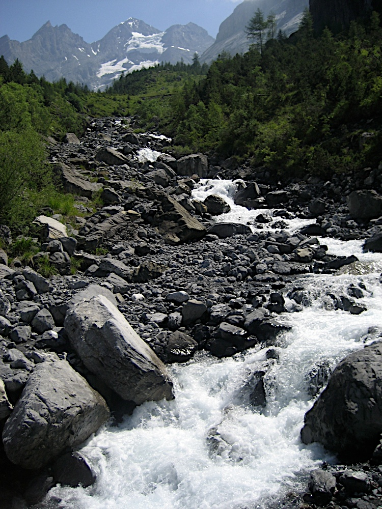 Campaments a Suïssa (Kandersteg) 2009 - IMG_3613.jpg