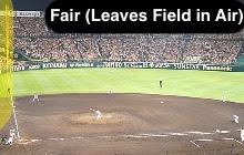 Fair (Leaves Playing Field In Air [Home Run])