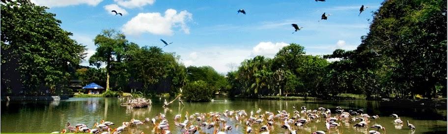 tunku abdul rahman lake selangor malaysia