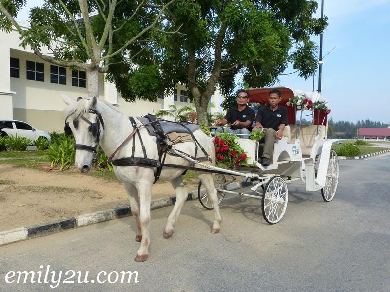 Terengganu Equestrian Resort (TER)