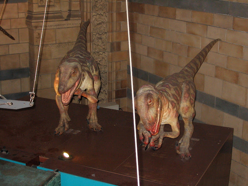 Makiety małych dinozaurów