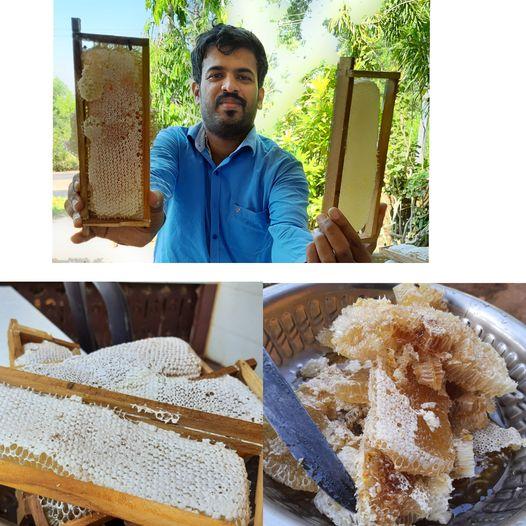 Covid lesson- Journalist turned agriculturist | ಕೊರೋನಾ ಕಲಿಸಿದ ಪಾಠ: 'ಮೊದಲ ಜೇನು ಫಸಲಿನ ಸಂಭ್ರಮ'
