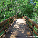 04-04-12 Hillsborough River State Park - IMGP9683.JPG