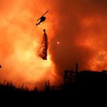 Atacando el fuego con BAMBI.jpg
