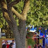 10-06-14 Texas State Fair - _IGP3268.JPG