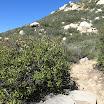 san-juan-trail-IMG_0268.jpg