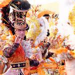 CarnavaldeNavalmoral2015_230.jpg