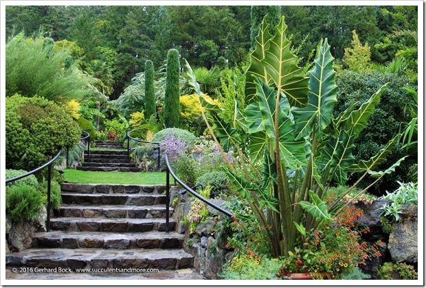 160906_Butchart_Gardens_0024