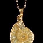 Kathy Schreiner Ammonite 1aa.jpg