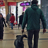 KNON puppys in de stad nov 2008 - Bertus%25252520stad.jpg