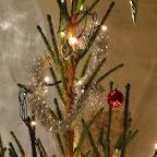 UI jõulupuu 2013 041.jpg