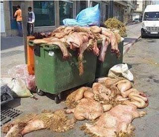 Peaux des moutons de l'Aid: Une fortune qui va à la…poubelle