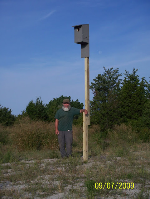 Kestrel-Bat Houses - pic4.jpg