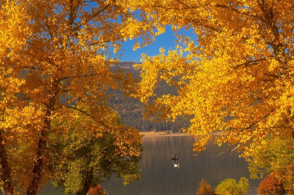 [Autumn+Anglers%5B5%5D]
