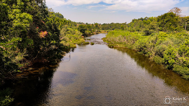 View from the hanging bridge