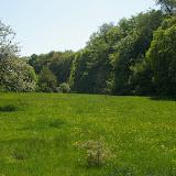 Hautes-Lisières (Rouvres, 28), 21 avril 2011. Photo : J.-M. Gayman