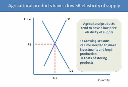 Premise Indicator Words: Price Elasticity Of Supply