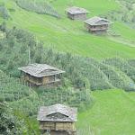 [Leh-Ladakh Ride-1 to 16 Jul 2011] [14to17Jul – Manali & 2 Delhi]