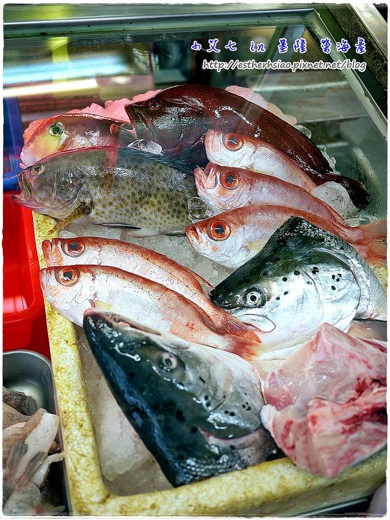 6 鮮魚們