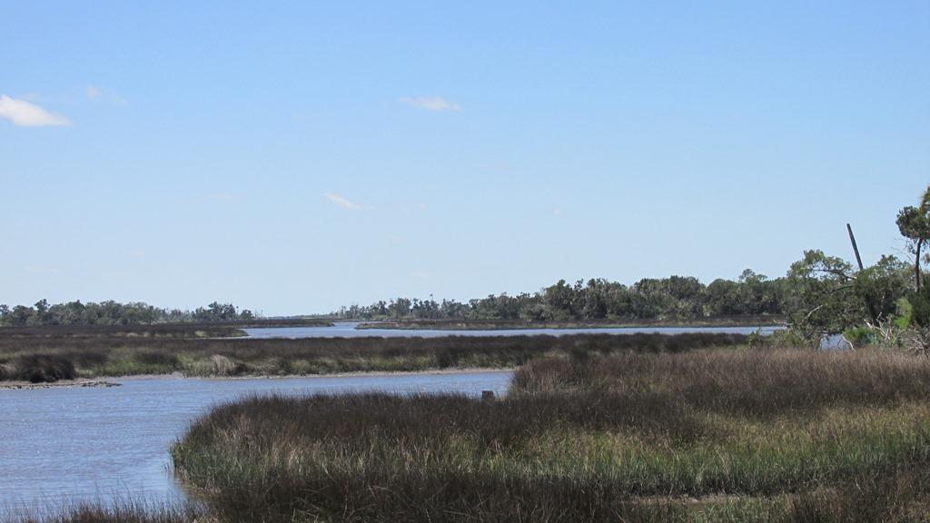 [9-Wetlands-26]