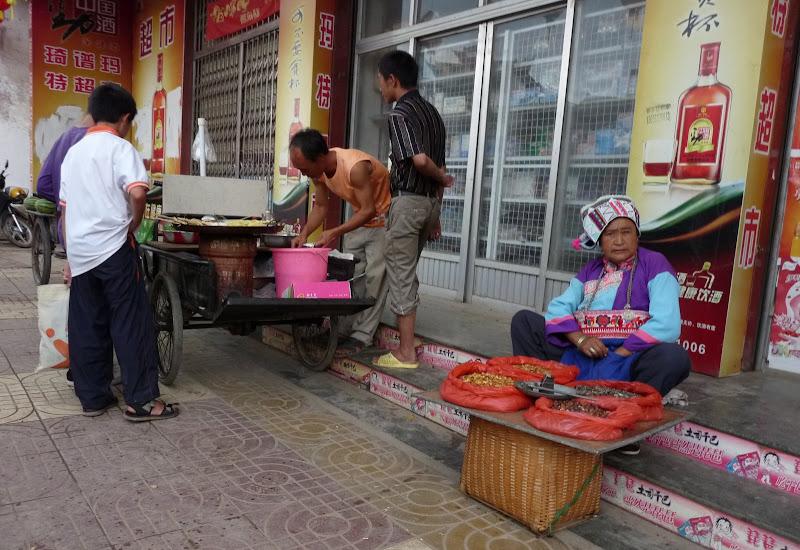 Chine.Yunnan Wen shan et BA MEI 1 - P1260828.JPG