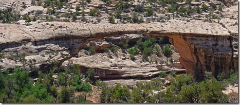 View Owachomo Bridge, Natural Bridges National Monument