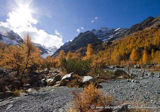 2015-10-11_Chiareggio-Porro_Valmalenco_104