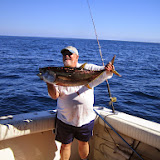 2008 Yellowfin Tuna
