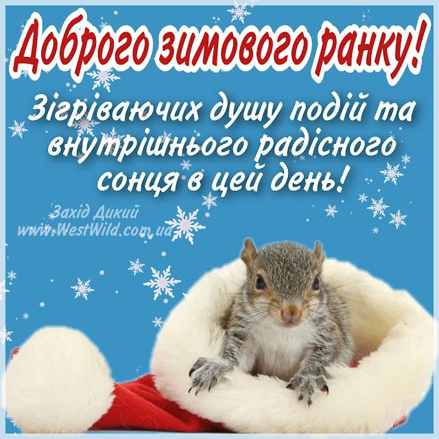 доброго зимового ранку