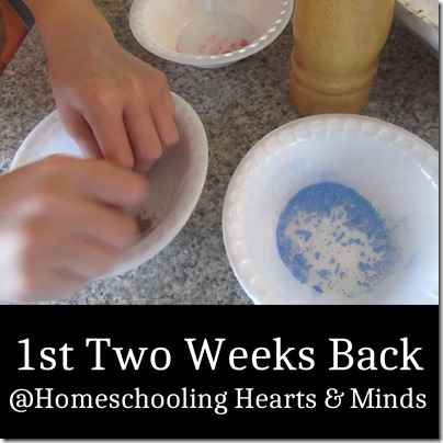 1st Two Weeks Back at Homeschooling Hearts & Minds