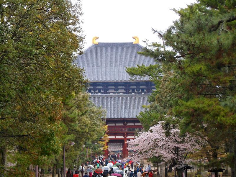 2014 Japan - Dag 8 - tom-SAM_0513-0018.JPG