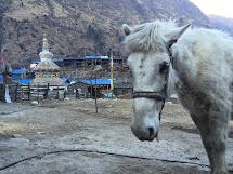 Nepál rok po ničivém zemětřesení. Foto: Archiv Člověka v tísni