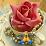 sonu Lather's profile photo