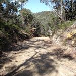 The Oaks Fire Trail nearing Woodford (74544)