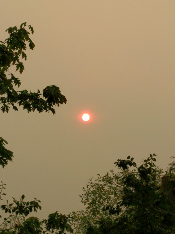 The morning sun glows orange as a think, smoky haze from wildfires settles on Seattle, 5 September 2017. Photo: James P. Galasyn
