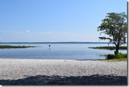 Lake Louisa Beach-2
