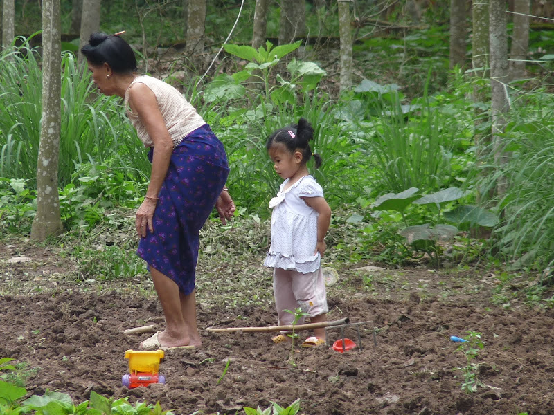 Chine . Yunnan..Galamba, Menglian Album A - Picture%2B016.jpg