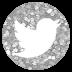 My Twiter