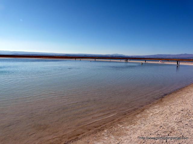 Laguna Cejar - P1010427.JPG