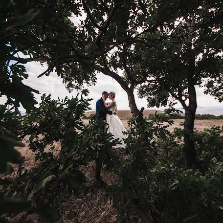 Wedding photographer Anna Svetlichnaya (Svetlichnaya). Photo of 23.11.2017